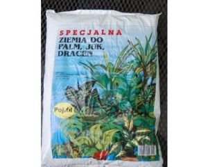 SPECJALNA ZIEMIA DO PALM, JUK, DRACEN 6L